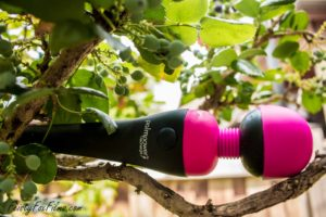 "The PalmPower Recharge, balacing in a tree. The pink silicone head is pointing to the right and the small handle is on the left, the words ""PalmPower Recharge"" and the on/off button both clearly visible."
